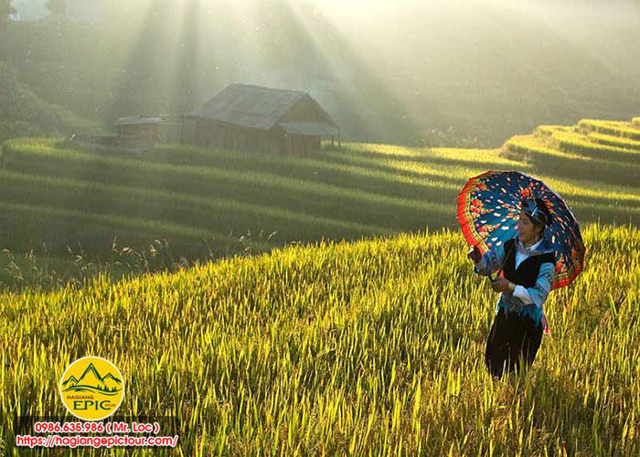 Tour Xe Máy Hà Giang Mùa Thu