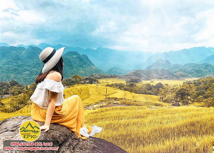 Cung Di Du Lich Cùng Đi Du Lịch Hà Giang Tháng 8 Rực Rỡ Mùa Lúa Vàng Mê MảiHa Giang Thang 8 Ruc Ro Mua Lua Vang Me Mai